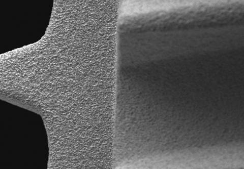 Abbildung: Ausschnitt Dentalimplantat 100x Vergrösserung