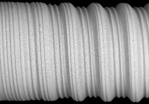Abbildung: Ausschnitt Dentalimplantat 50x Vergrösserung